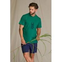 Пижама мужская с шортами MNS 741 1 A21